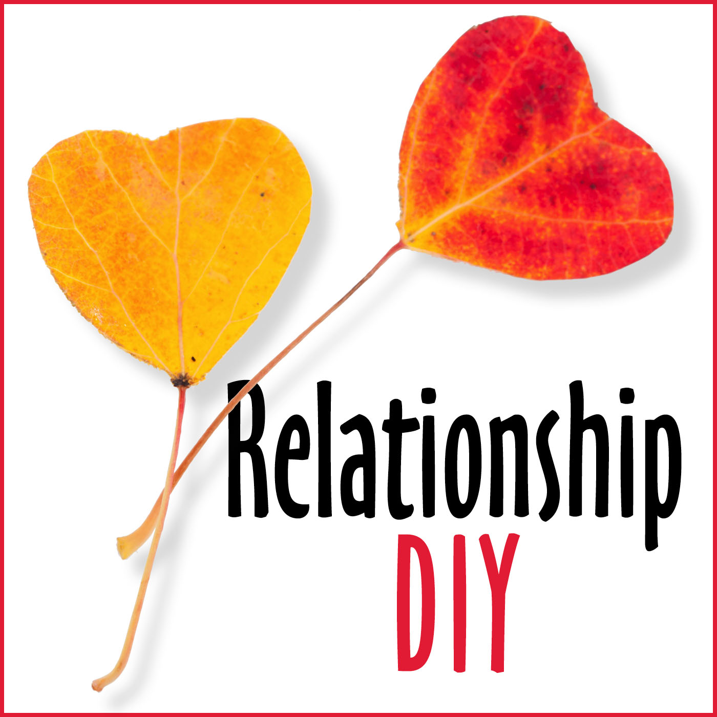 """Relationship DIY""  DIY Relationship Skills with Julie Colwell, PhD."